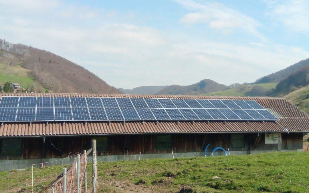 Familienbetrieb erntet Sonnenenergie mit dem Solar-Abo